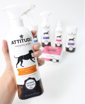 desodorisant_attitude