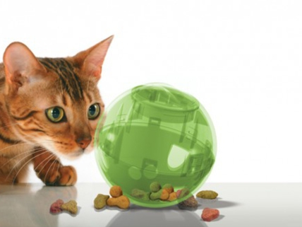 SlimCat food-dispensing ball by PetSafe